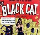 Black Cat Comics Vol 1 29