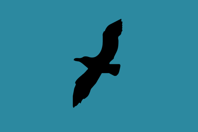 File:Northern Flag.png