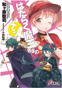 SS cover