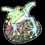 Frogglasshatched