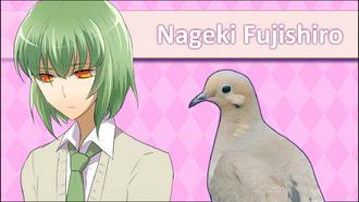 NagekiFujishiroRemakeICPSS