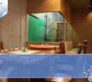 Torimi Cafe - Poko no Mori