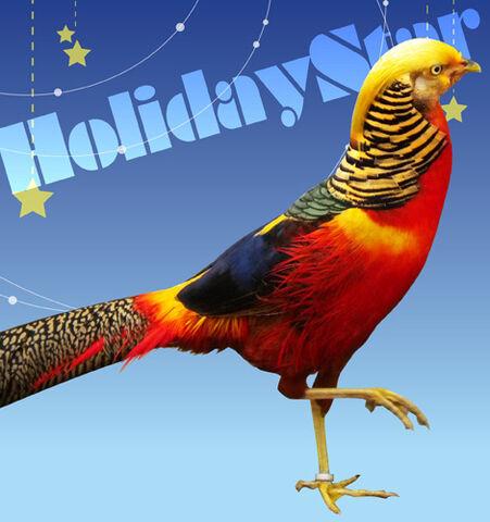 File:HolidayStar.jpg