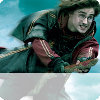 Social Harry Potter