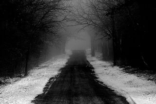 The dark creepy sowy road