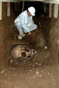 Giant skull found underground