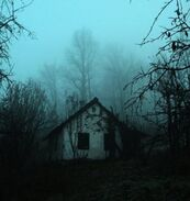 House in woods creepy