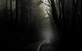 The dark creepy road 2