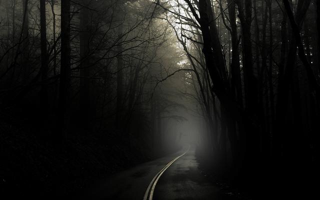 File:The dark creepy road 2.png
