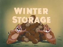 Winter Storage - title card
