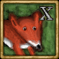 Файл:Fox.png