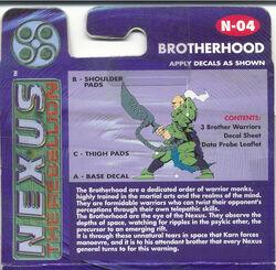 Brotherhood Back