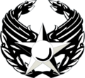 Air Force Commander's Insignia.png