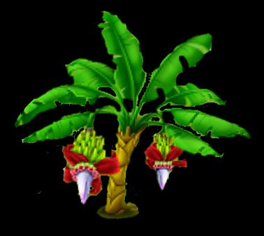 File:Banana Tree Stage 2.png
