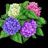 Hortensias moradas