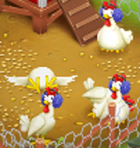 File:Chickens Winter.png