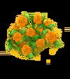 Rosenzaun Orange