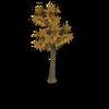 Lemon Tree Dead
