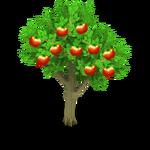 Apple Tree Harvest 3