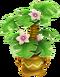 Grüne Pflanze