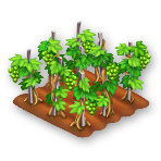 File:Grapes Stage 2.png