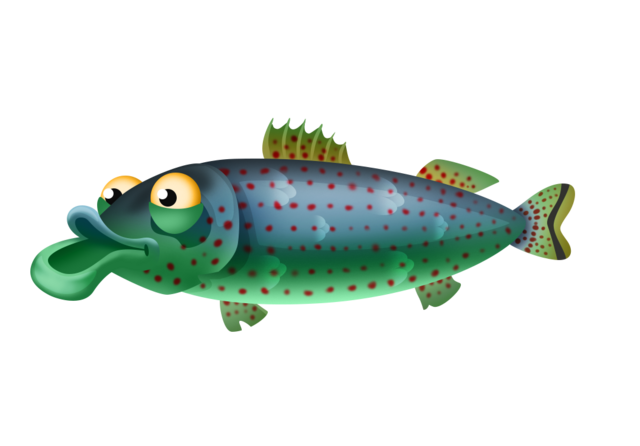 File:Northern Studfish.png