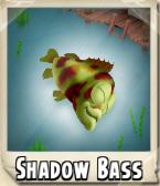 Shadow Bass Photo