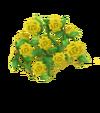 Rosenzaun Gelb