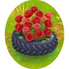 Gomma Rosa