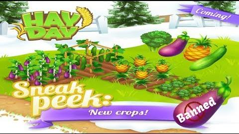 Hay Day Live Stream and Gameplay - Sneak Peeks, Truck Event, Update Talk