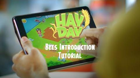 Hay Day Introducing the Bees