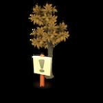 Lemon Tree Revival