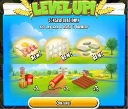 Level 11