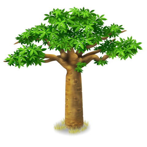 File:Baobab Tree.png