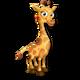 Girafon Jaune