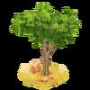 Small Acacia Tree