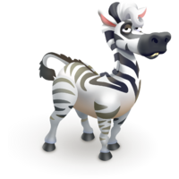Cowlick Zebra