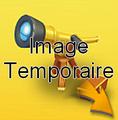 Télescope en or
