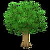 Dark Leafy Tree