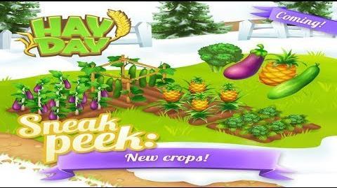 Hay Day Winter Update 2018 - Sneak Peek 1 Crops