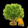Dunkler Laubbaum
