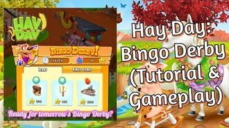 Hay Day How to Play the Bingo Derby? (Tutorial & Gameplay)