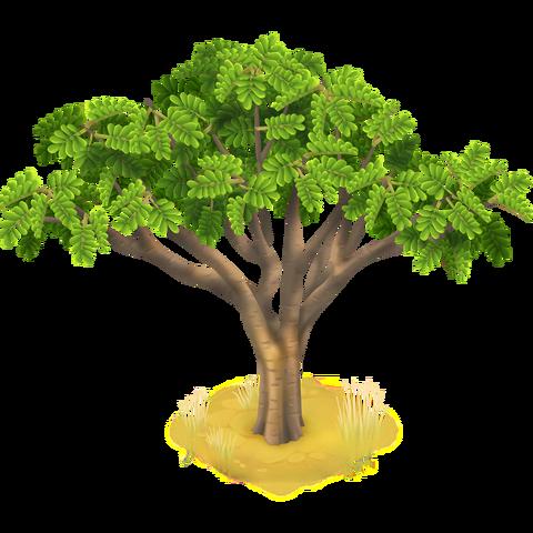 File:Acacia Tree.png