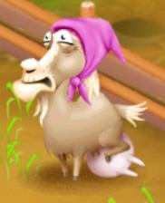 Latte di capra pronto inverno