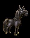 Cavalloandaluso