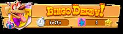Bingo Derby