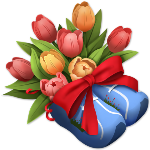 File:Tulip Shoes.png