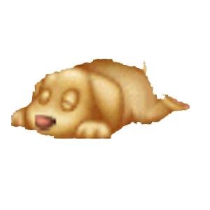 Cucciolo di Retriever Addormentato