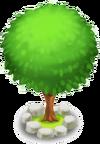 Kugel-Topiari