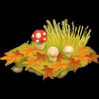 Poisonous Mushrooms x5